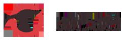 القامشلي : اشتباكات مستمرة بين الأسايش و ميليشيات النظام .. و مقتل شقيق قائد كتائب البعث